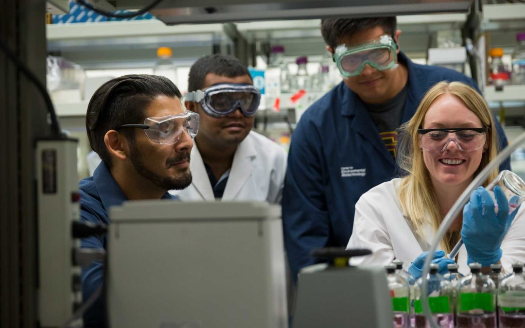A professor works in his lab with three students